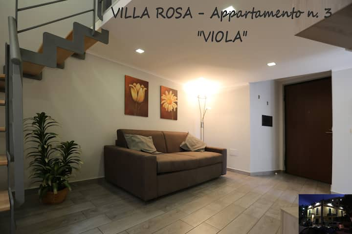 """VILLA ROSA - Appartamento n. 3 """"VIOLA"""""""