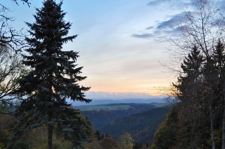 Herrlicher Alpenblick in komplett neuem Ambiente.