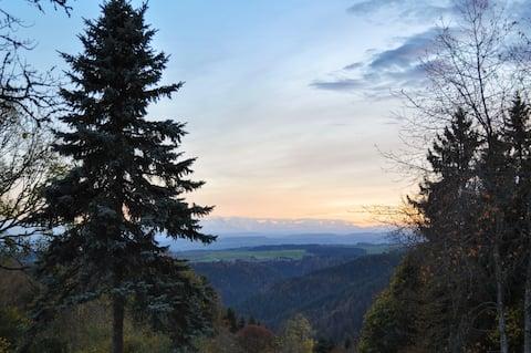 Herrlicher Alpenblick, modernes Ambiente.