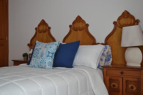Casa centro Aguascalientes 5