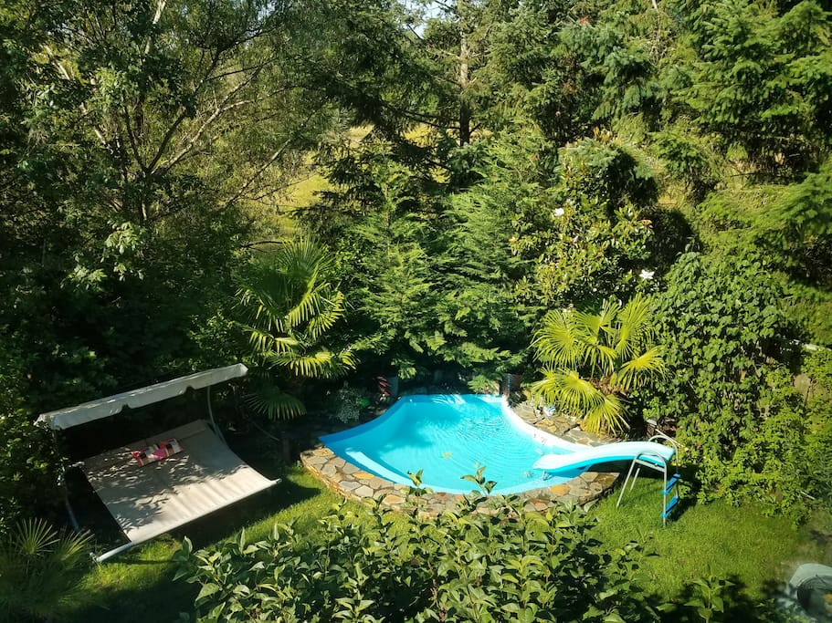 View of backyard from master