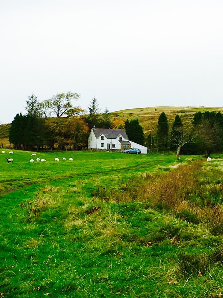 Welsh cottage on the moors near Bala
