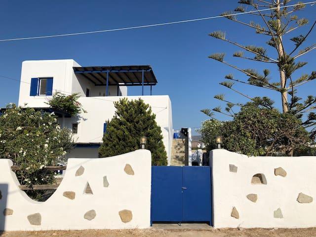 Valentina's House