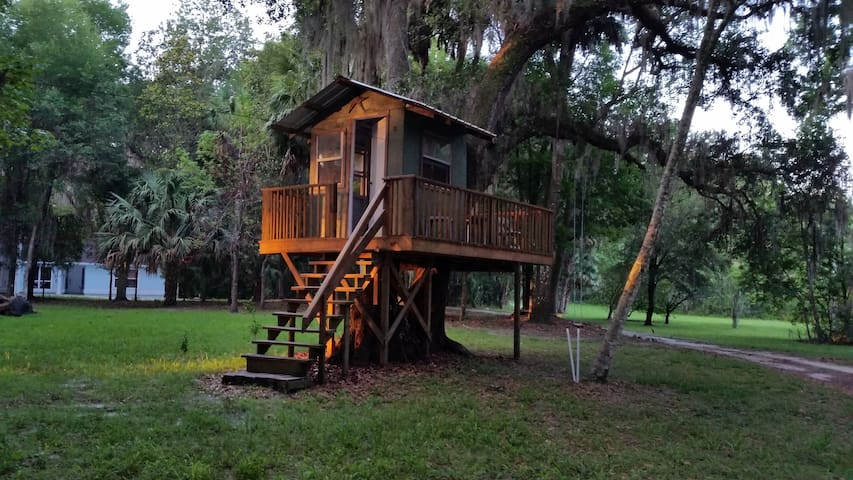 Private Apartment in Micanopy, minutes from UF - Micanopy - Leilighet