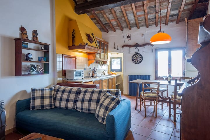 Bright and Cozy Apartment near San Frediano