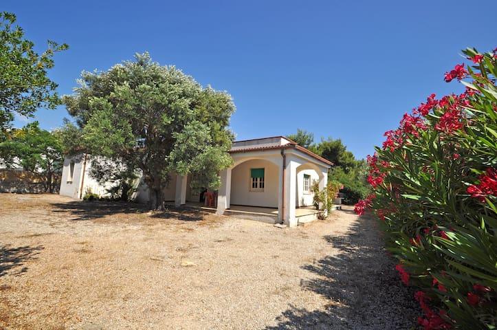 Villa da 14 posti sul mare - Capilungo - Villa