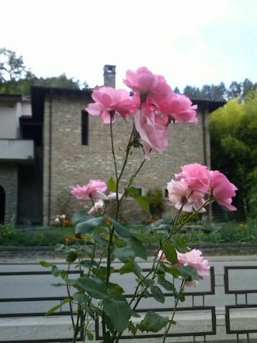 The country house on the river. - Palazzuolo Sul Senio - Apartamento