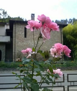 The country house on the river. - Palazzuolo Sul Senio - Apartment