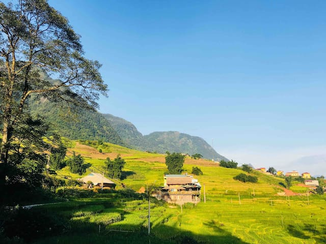 Hoa's Homestay have over rice fields and mountain