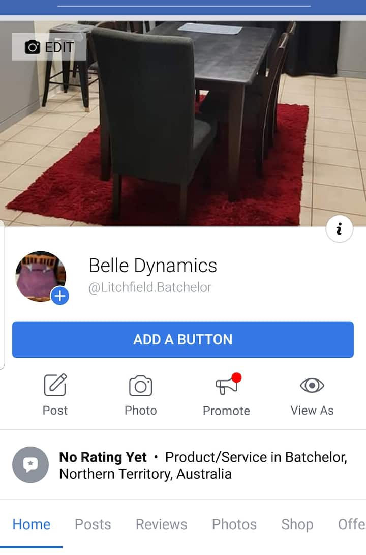 Belle Dynamics