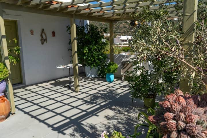Premium terrace apartment (27m2)