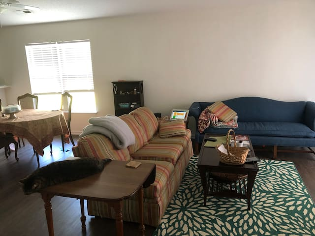 Housemate wanted 3 bed 2 bath near hospital