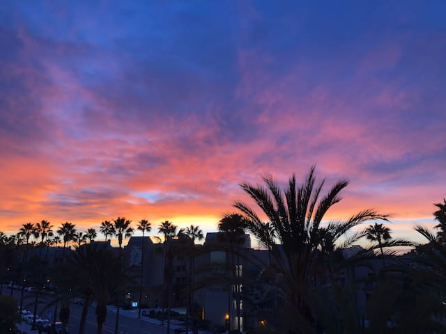 Easy Living in La Jolla