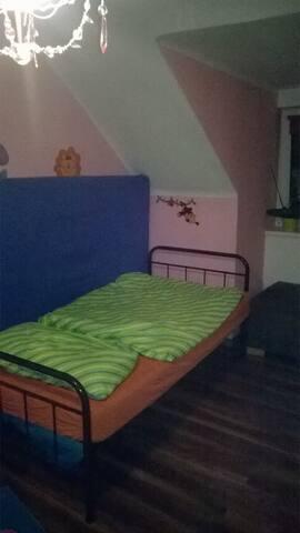 Tolles Zimmer im Zentrum von Wels - Wels - Apartment