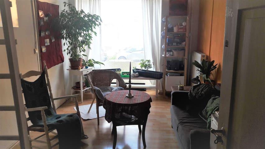Gemütliches Zimmer direkt am Seerhein - Konstanz - Lägenhet