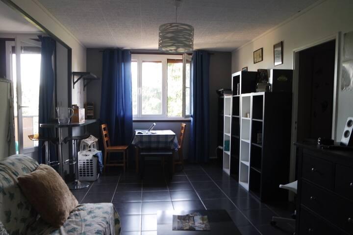 T3 neuf, calme, vue sur Loire, idéal pour famille