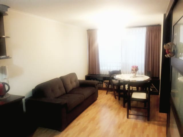 Beautiful furnished apartment  - Recoleta - Lägenhet