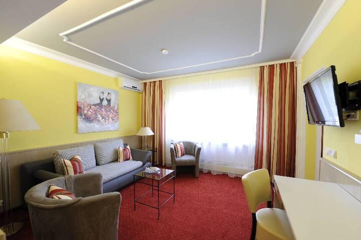 Hotel Ambiente, (Bad Bellingen), Junior-Suite