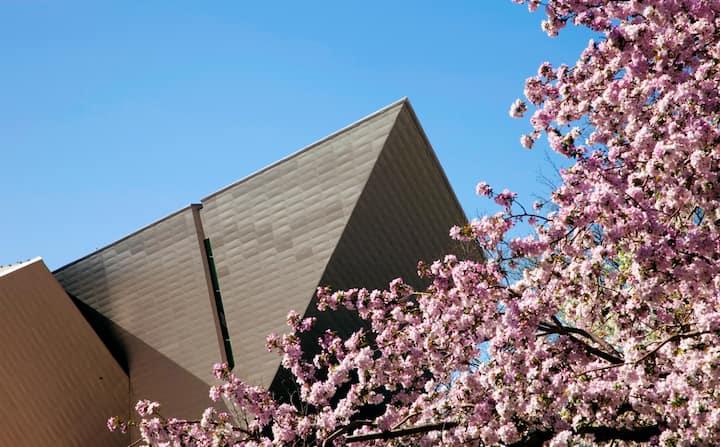 Photo of Denver Art Museum