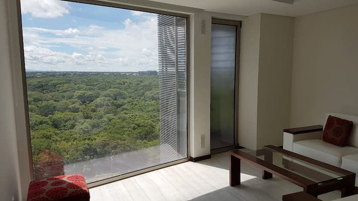 Luxury apartment in the most privileged area - SC