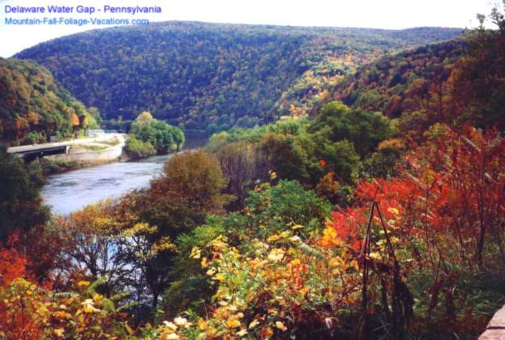 North Poconos are the perfect place for Fall Foliage Pics!