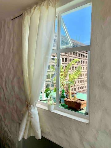Nos gusta lo verde y abrir las dos ventanas que tiene tu cuarto. Cuanta luz.