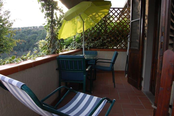 Casa Lama 4/6P, 2 double rooms, garden and terrace - Castelfranco di sopra - Wohnung