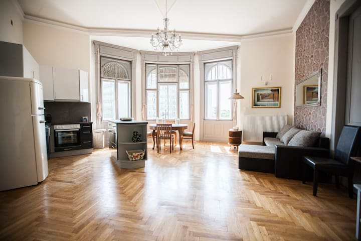 Panoramic flat, room near the train station of Bp