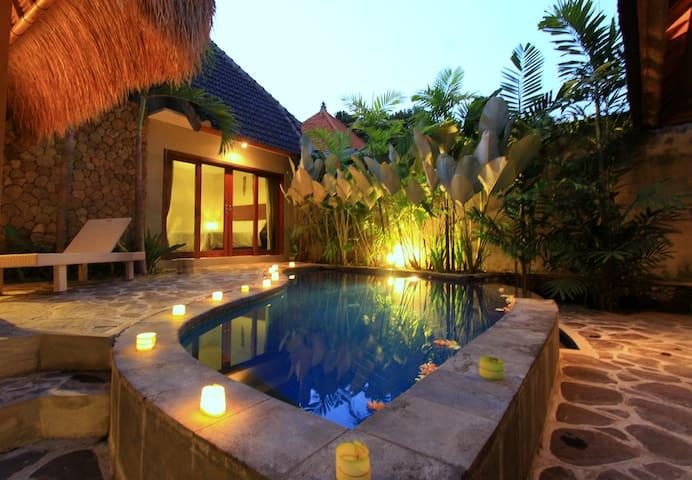 Vidi villa Two BR + Private Pool - Sukawati - Villa