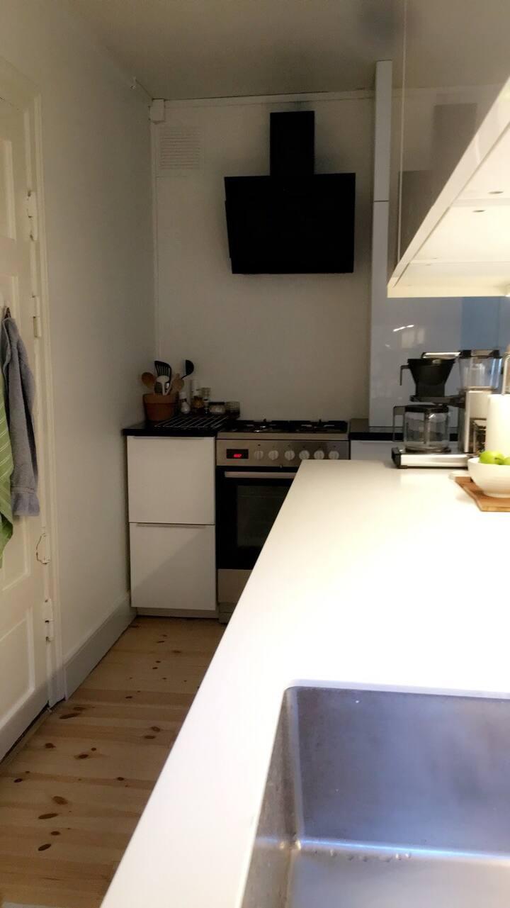 Cosy 3 bedroom apartment in centrum of Copenhagen