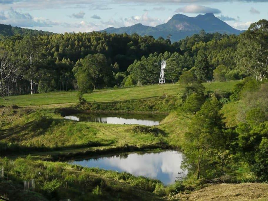 Views to Wollumbin
