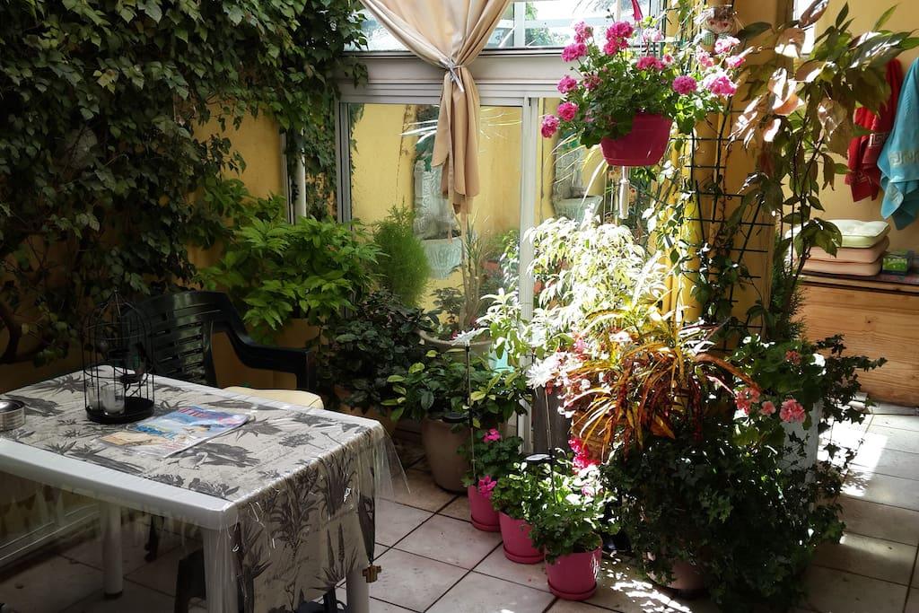 Outdoor patio. Smoking area