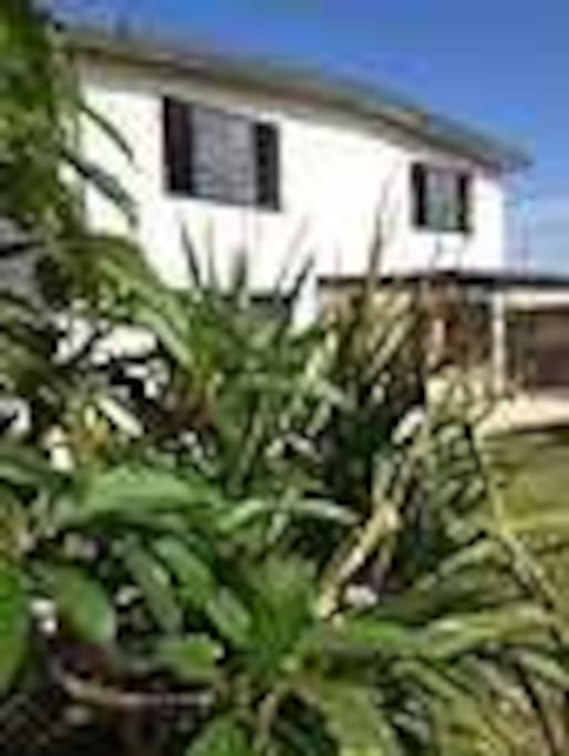 Tuckeroo Beach House