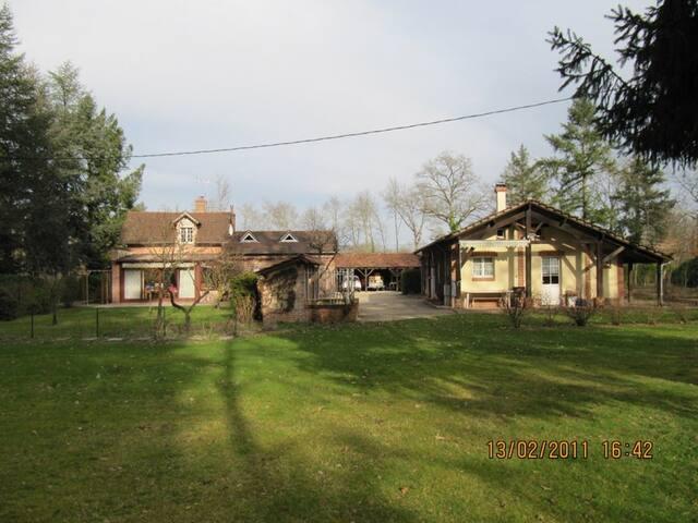 GITE EN SOLOGNE - Ménestreau-en-Villette - Podkroví