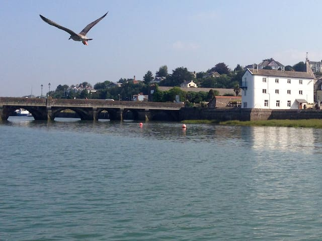 Detached riverside converted wharf - Bideford - House
