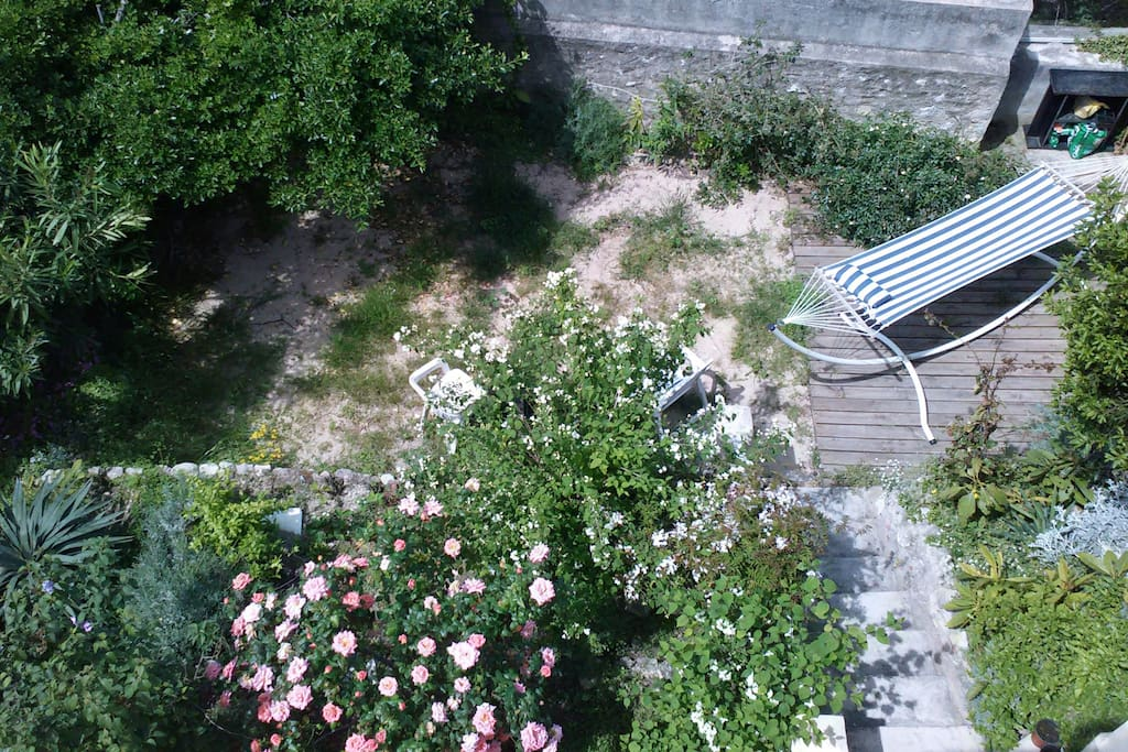 Garden with flowers and hamac