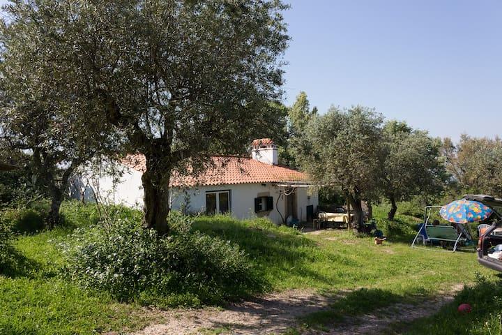 Canchos farm sings Alentejo - Castelo de Vide - Huis