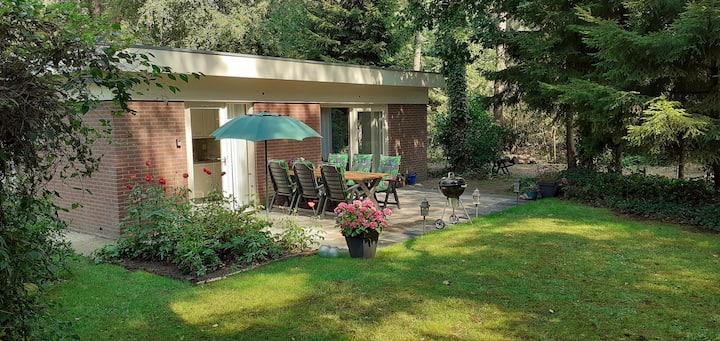 Drentse bungalow in natuur en rust ( NIEUW! )