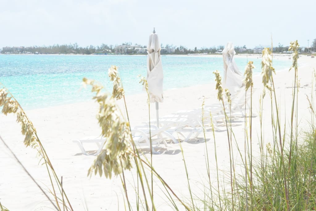 Lounges and umbrellas ready on the beach for SanClem guests