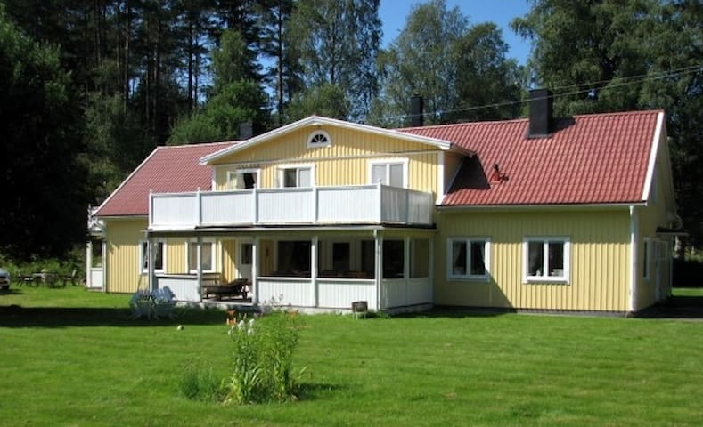 The house (front view)