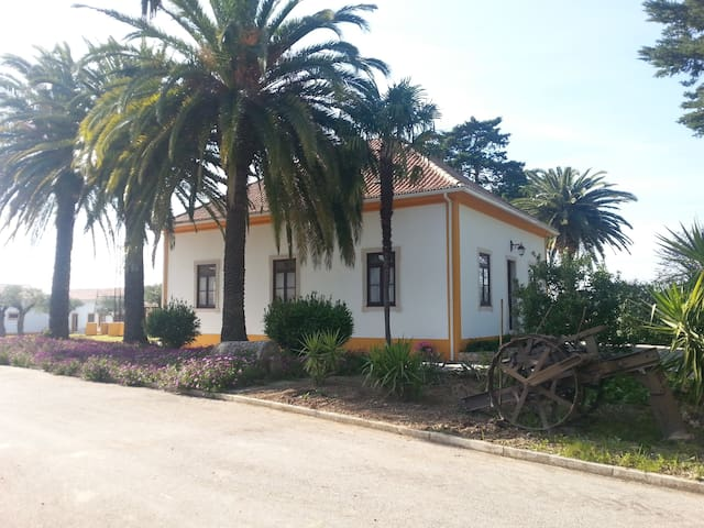 Quinta da Mata ( Casa do Lagar) - São Vicente do Paul - วิลล่า