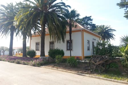 Quinta da Mata ( Casa do Lagar) - São Vicente do Paul - Villa