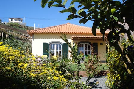 "Madeira Holiday Cottage ""BOAL"" - House"