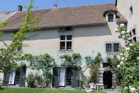 Ancienne demeure du 17ème siècle,pleine de charme. - Sousville