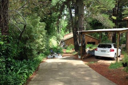 Cosy cabin/house in beautiful Leura - Leura