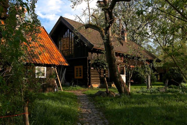 Owl's hideaway - Burg (Spreewald) - Srub