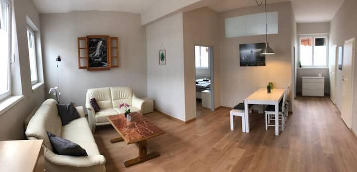 Bright & spacious 3-room-apartment TOP EG