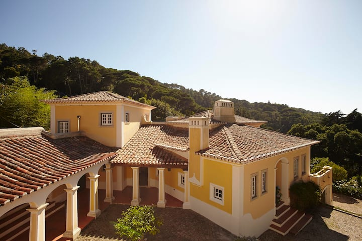 Quinta Matalva with views on Monserrate forest