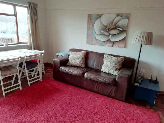 Private room in spacious flat in Southern Suburbs