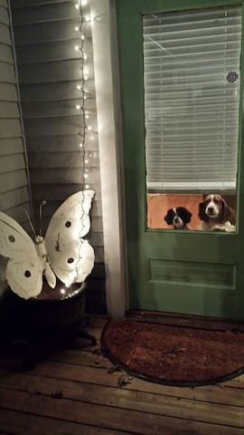 Pet Friendly Suite In Fabulous Kirkwood